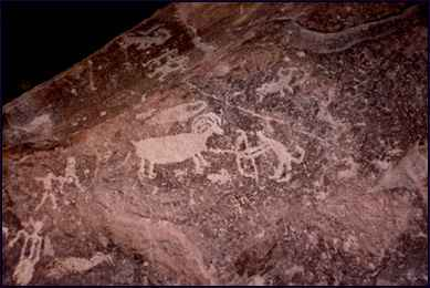 Picture of Bighorn Sheep petroglyph.